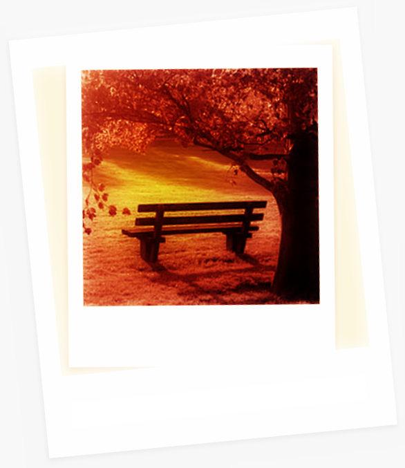 foto-banco-parque-124