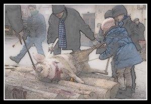 ninos-matanza-del-cerdo